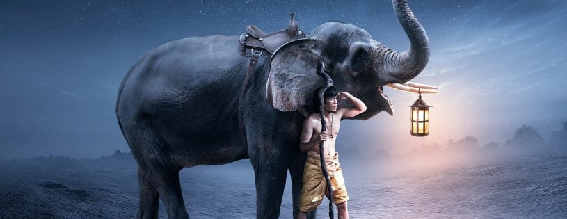 Feng Shui, Elefante de la Abundancia 1